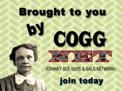 coggnet.com